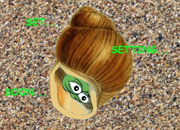 Rare Pepe meme - shell - soon Acid chains electronica ottawa music art cover butterfly lsd